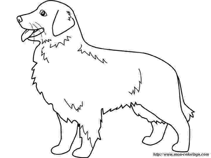 golden retriever coloring pages dog color pages printable golden retriever dog coloring golden pages coloring retriever