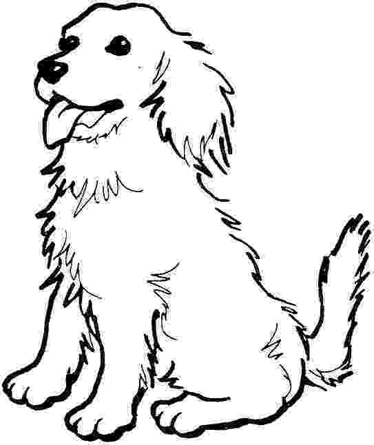 golden retriever coloring pages easy to draw golden retriever google search dog retriever golden coloring pages