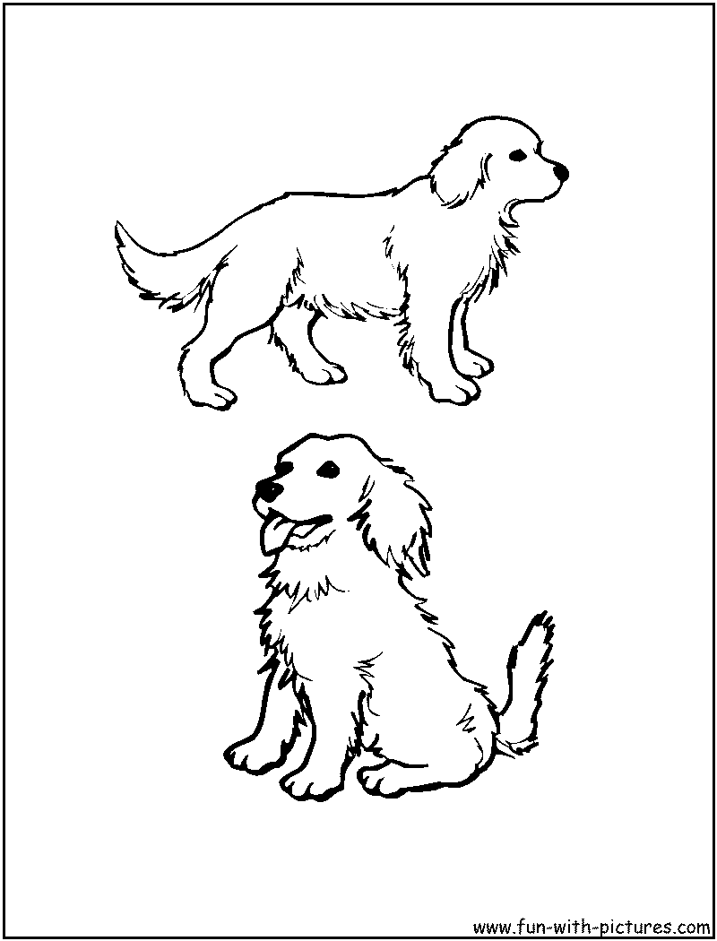 golden retriever coloring pages golden retriever puppy coloring pages printable coloring pages coloring golden retriever