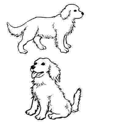 golden retriever puppy coloring pages coloring dogs page golden retriever coloring retriever puppy pages golden
