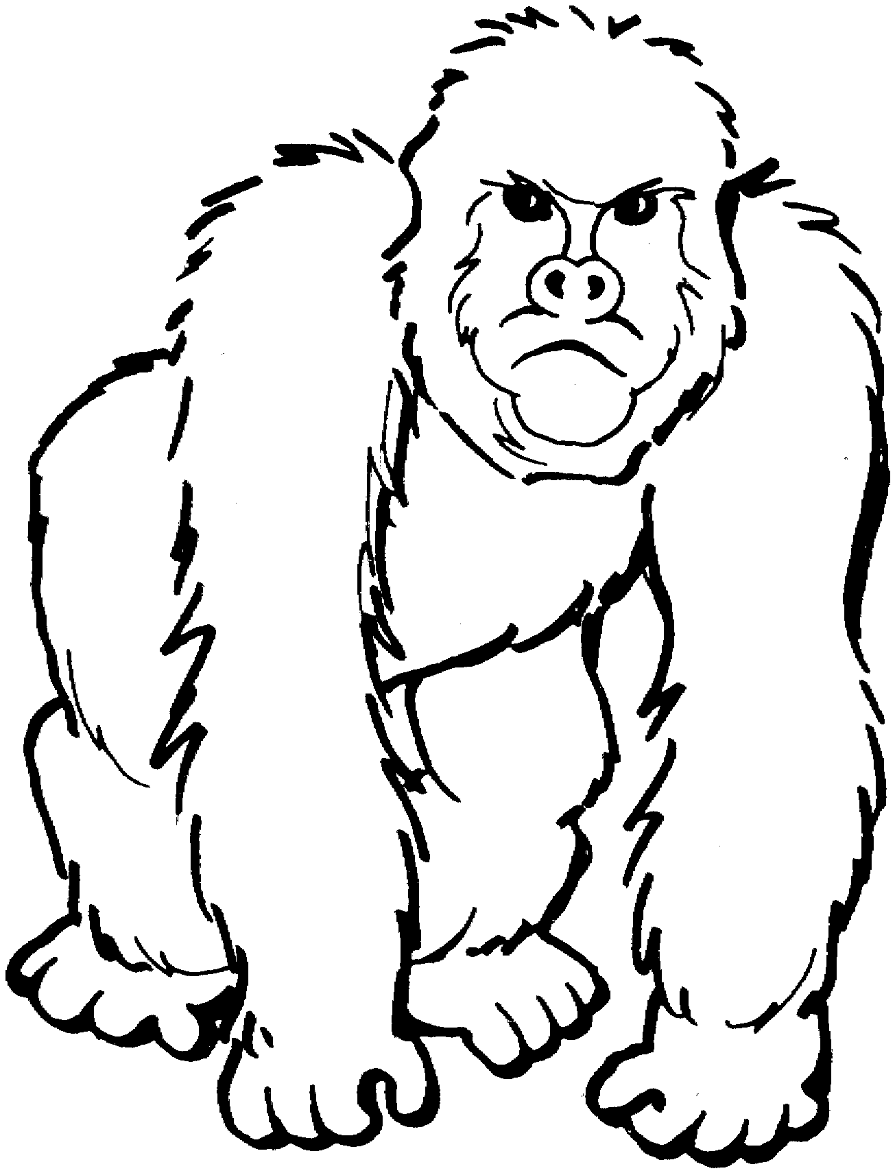 gorilla printable free online coloring pages thecolor gorilla printable