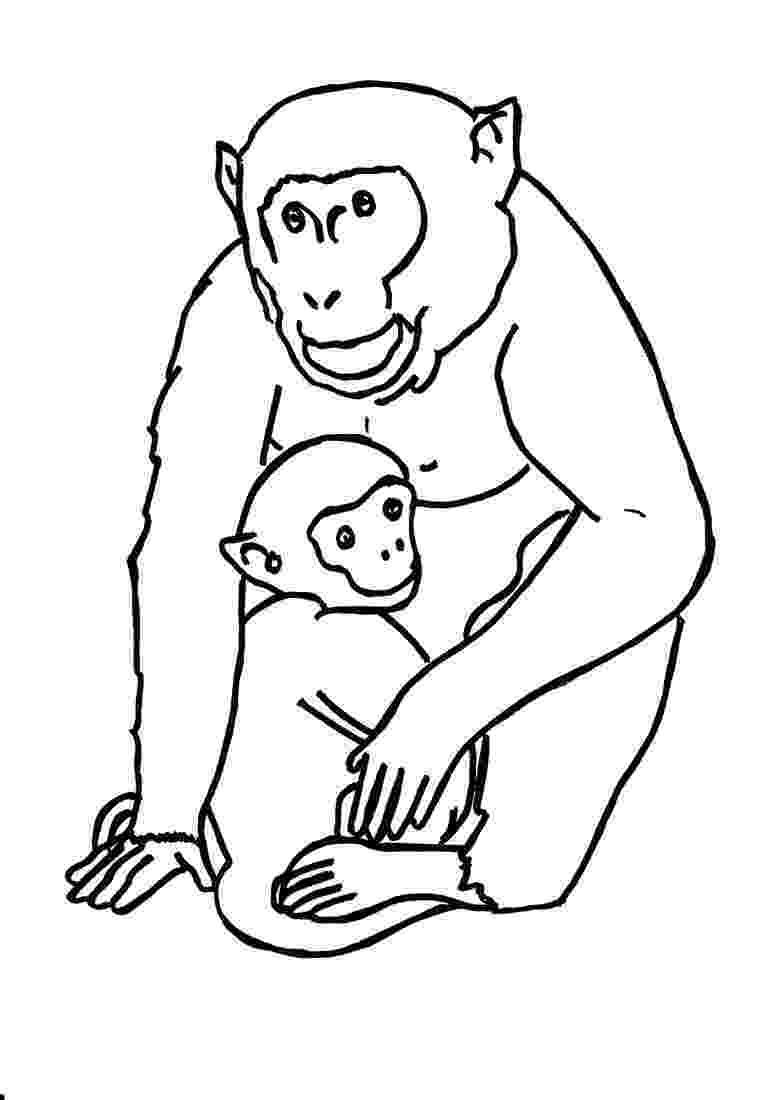 gorilla printable gorilla 7 animals printable coloring pages gorilla printable