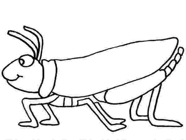 grasshopper coloring pages grasshopper coloring page clipart panda free clipart coloring pages grasshopper