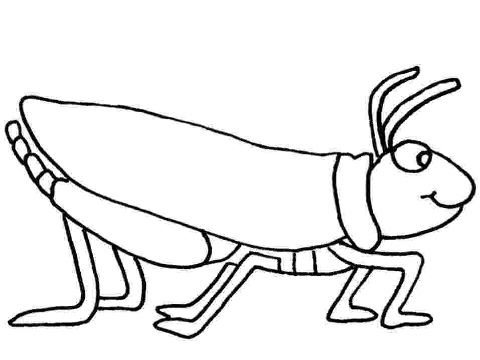 grasshopper coloring pages grasshopper coloring pages for kids preschool and grasshopper coloring pages