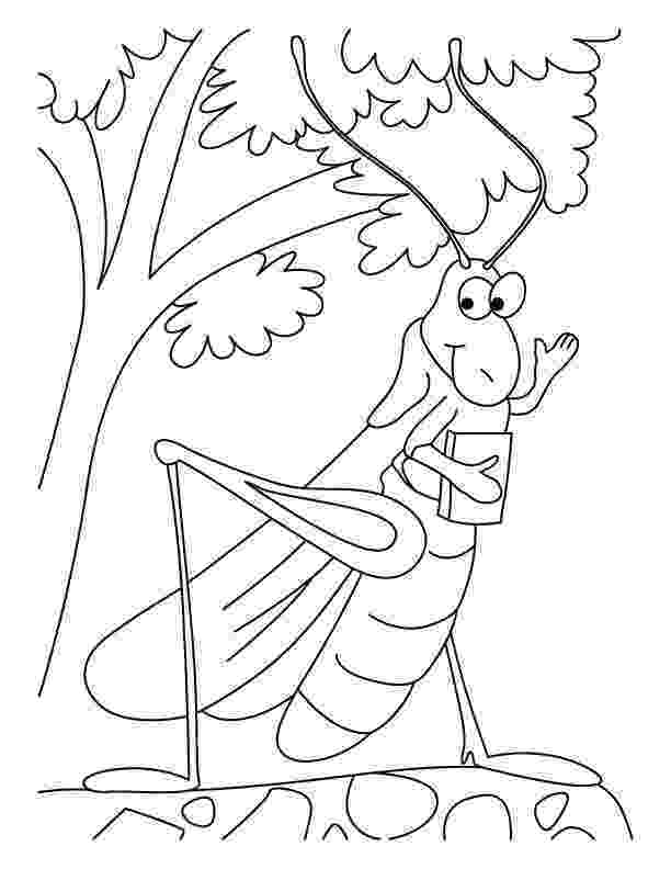 grasshopper coloring pages the ant and the grasshopper coloring pages coloring home pages coloring grasshopper