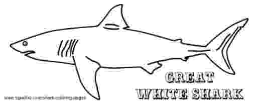 great white shark coloring 7 shark sheets educationcom great white coloring shark