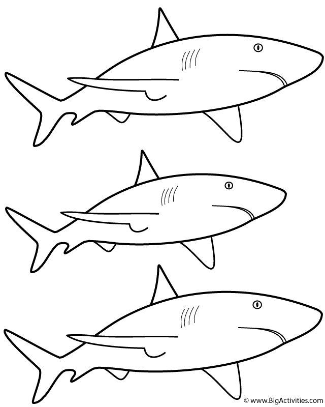 great white shark coloring great white shark 3 coloring page free printable great shark coloring white