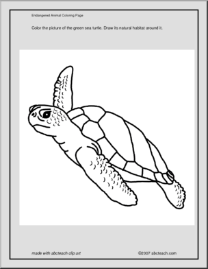 green sea turtle coloring page coloring page green sea turtle abcteach turtle sea page green coloring