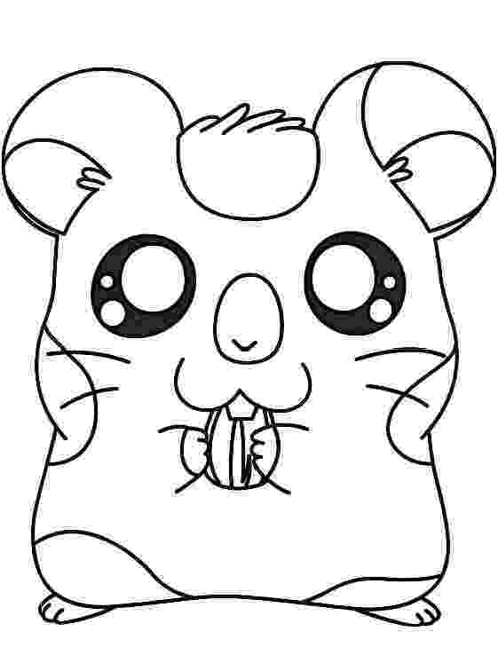 hamster colouring hamster coloring pages best coloring pages for kids colouring hamster 1 1