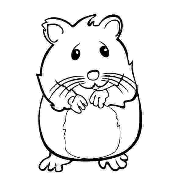 hamster colouring hamster coloring pages best coloring pages for kids hamster colouring 1 1