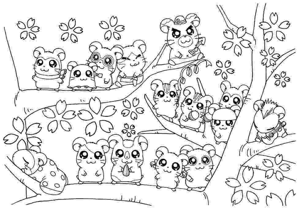 hamster colouring hamster coloring pages best coloring pages for kids hamster colouring 1 2