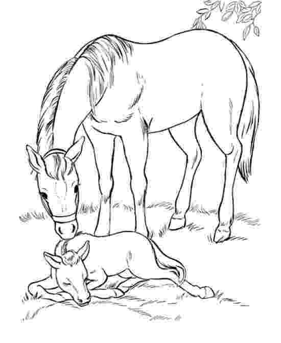 horse coloring games horses in love game play free coloring games online horse coloring games