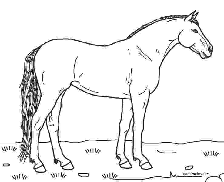 horses to color free printable horse coloring pages for kids cool2bkids color to horses