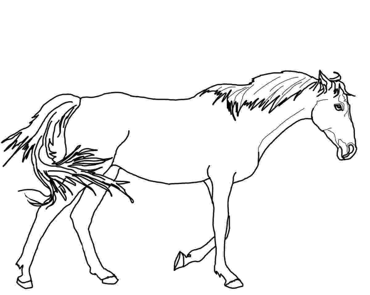 horses to color horse coloring pages for kids coloring pages for kids to horses color 1 1