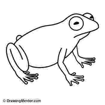how to a frog how to draw a frog step by step fresh water animals how frog to a