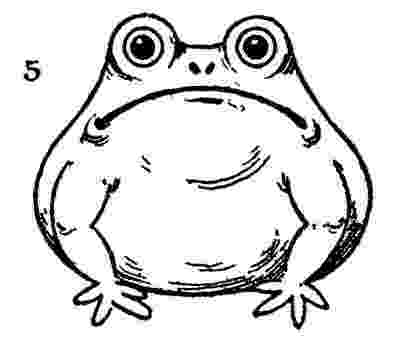 how to a frog how to draw a frog the graphics fairy how a frog to