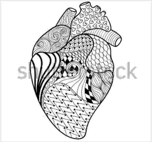 human heart coloring page human heart coloring pages 205 science pinterest heart coloring page human