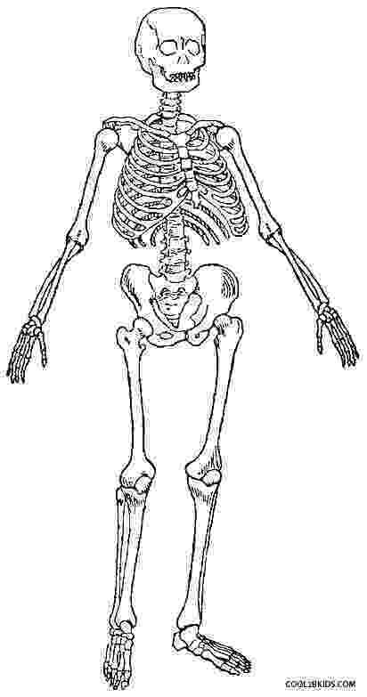 human skeleton coloring page anatomy coloring pages surfnetkids human skeleton page coloring