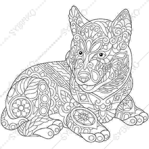 husky pictures to colour funny husky coloring page free printable coloring pages colour husky pictures to