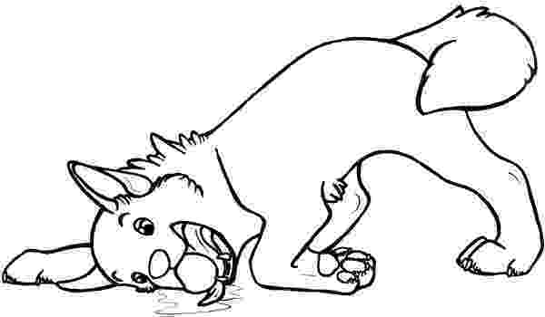 husky pictures to colour printable siberian husky coloring pages coloringsnet to colour husky pictures