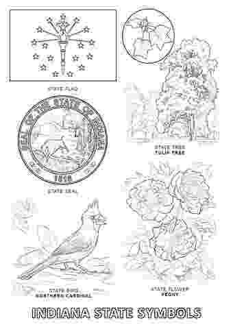 illinois state bird nebraska state bird coloring page free printable bird state illinois