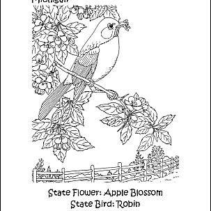 illinois state bird usa states state of virginia coloring pages state bird illinois