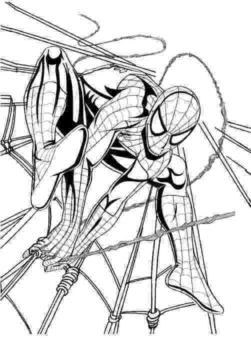 imagens do homem aranha para colorir colorir imagens desenhos para colorir homem aranha do colorir imagens homem aranha para