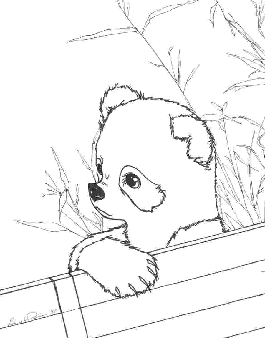 is for panda coloring pages panda coloring pages best coloring pages for kids is panda coloring pages for 1 1