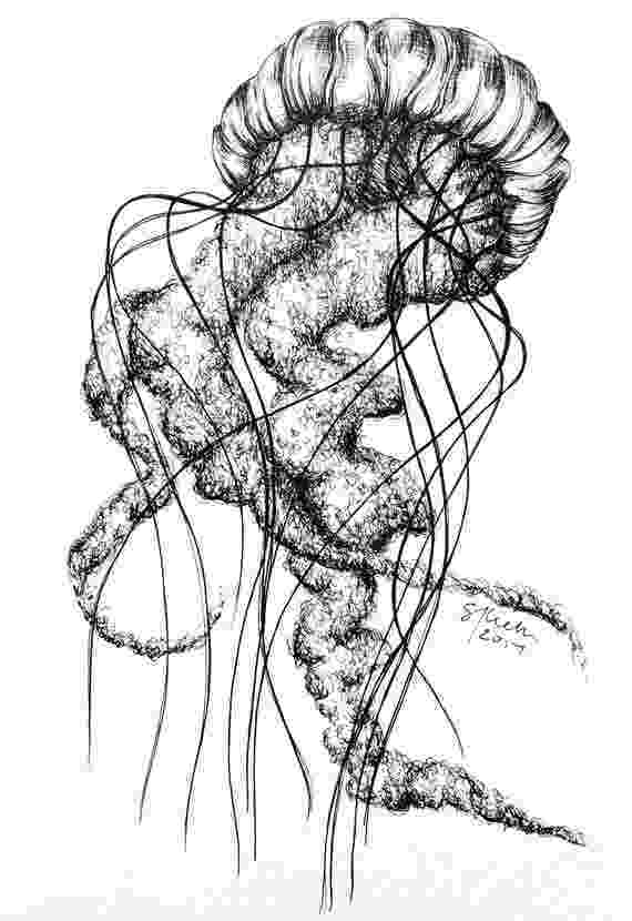 jellyfish sketch hand drawn sketch of jellyfish in monochrome vector jellyfish sketch