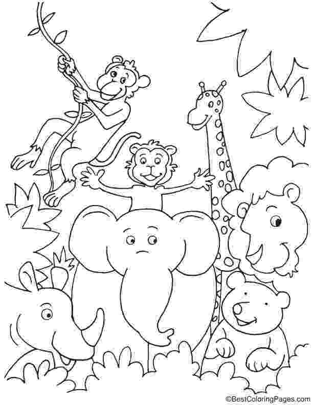jungle animal coloring book pages fun in jungle coloring page jungle coloring pages zoo book coloring jungle pages animal