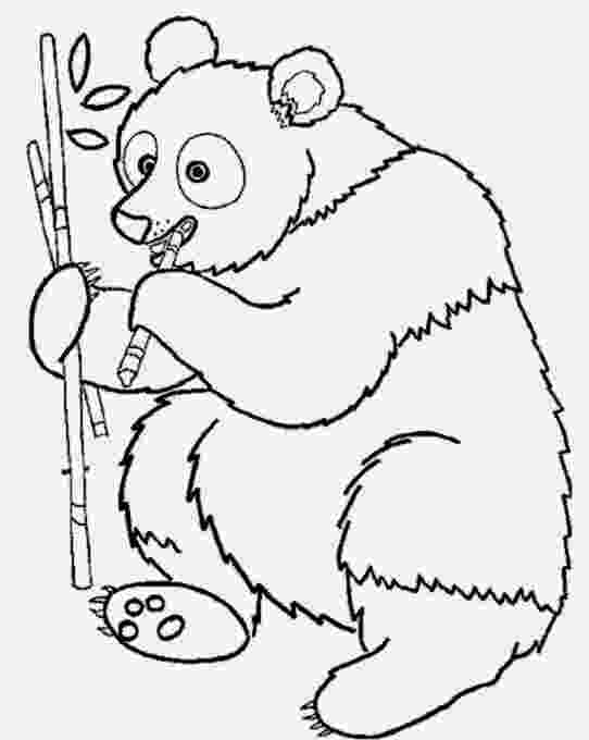 jungle animal coloring book pages jungle animal coloring pages jungle pages book animal coloring