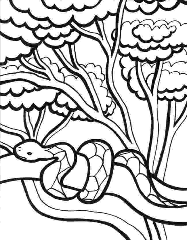jungle animal coloring book pages jungle animal coloring pages to download and print for free coloring jungle pages animal book