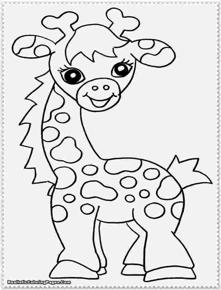 jungle animal coloring book pages safari or african savanna animals free printable coloring book jungle animal pages