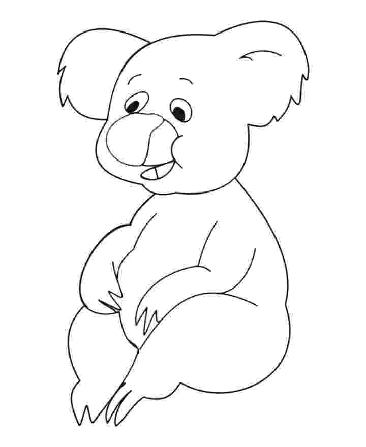 koala coloring pages australian animal colouring pages coloring koala pages