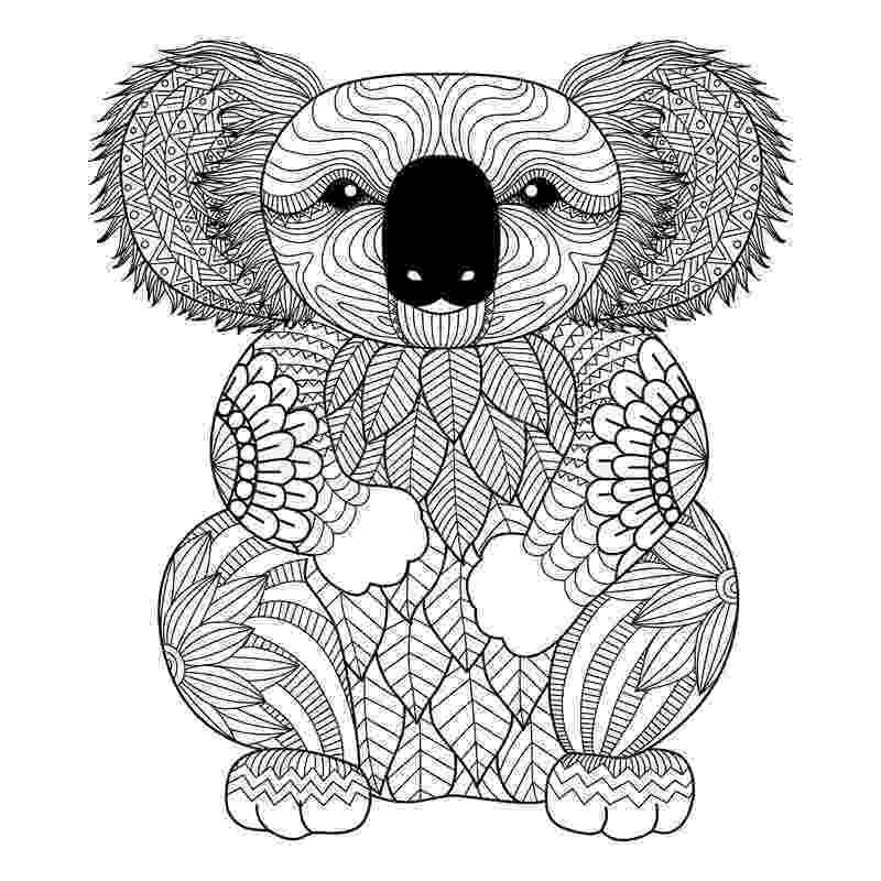 koala coloring pages free printable koala coloring pages for kids animal place pages koala coloring