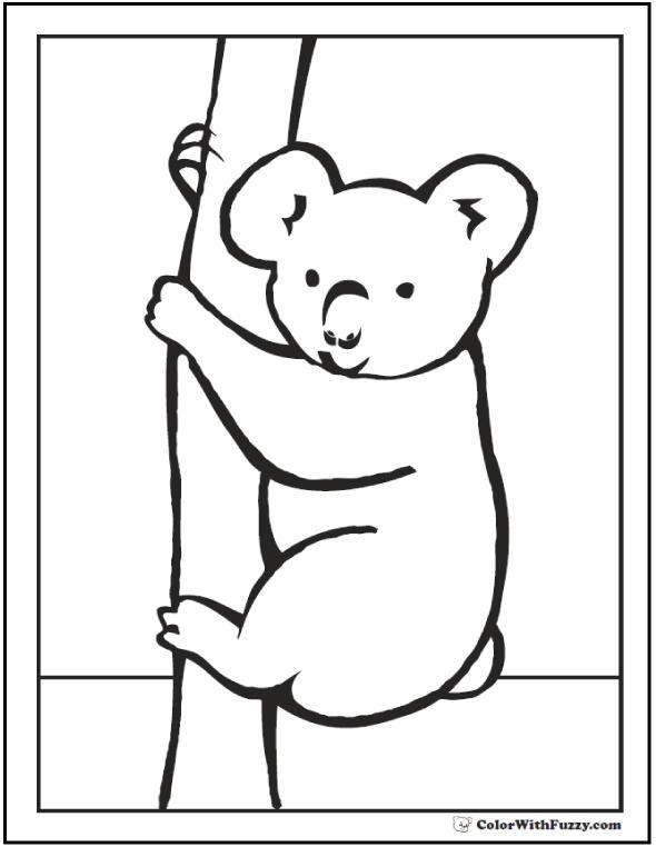 koala coloring pages free printable koala coloring pages for kids koala coloring pages