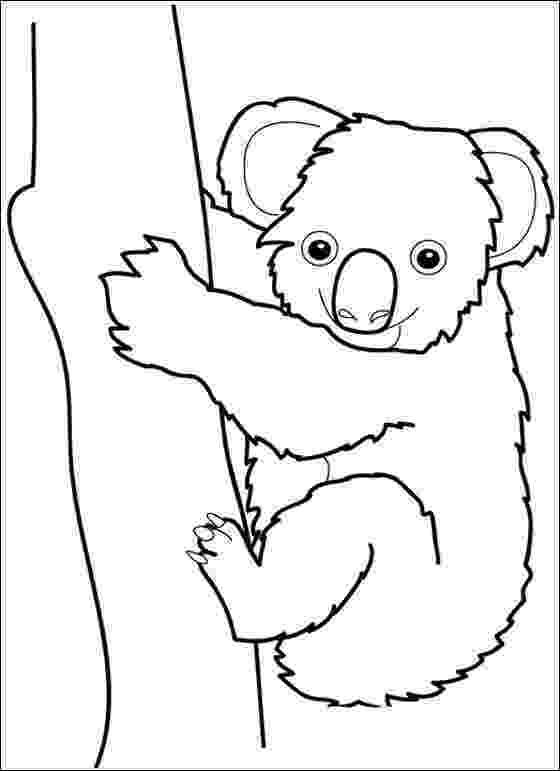 koala coloring pages kids n funcom 11 coloring pages of koala bears koala pages coloring
