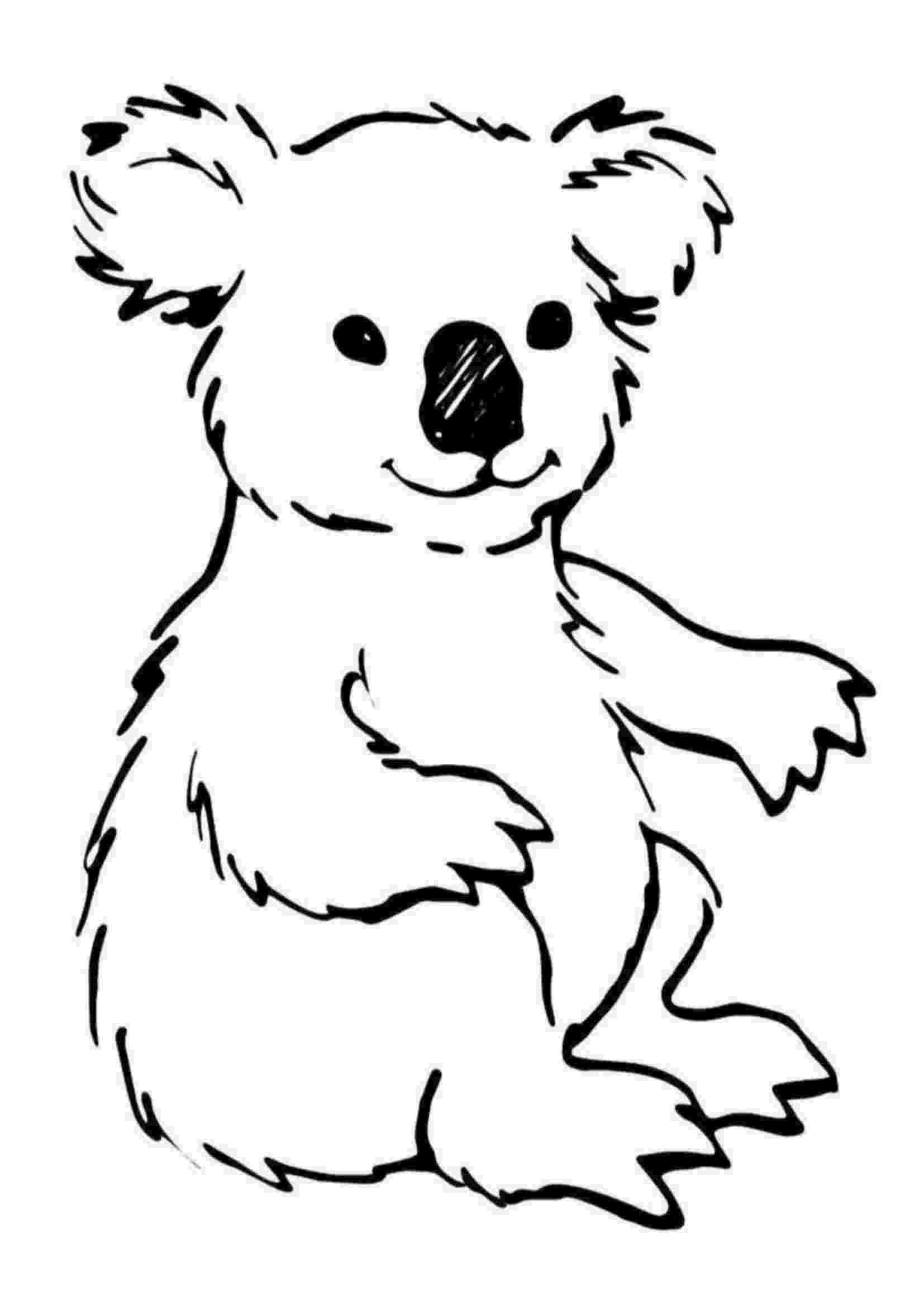 koala coloring pages koala coloring page super simple coloring koala pages