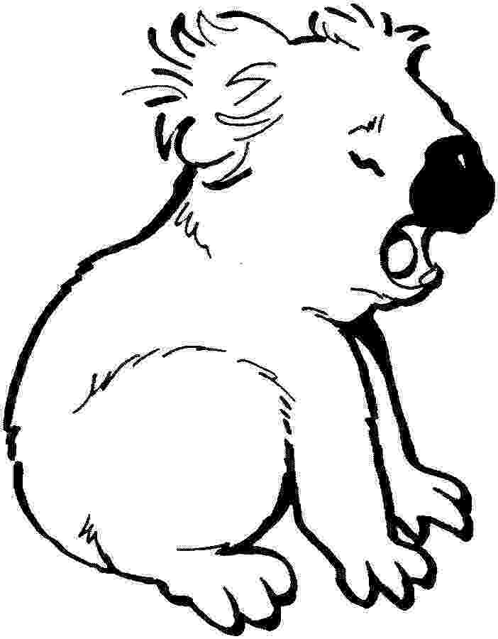 koala coloring pages koala coloring pages to download and print for free coloring koala pages