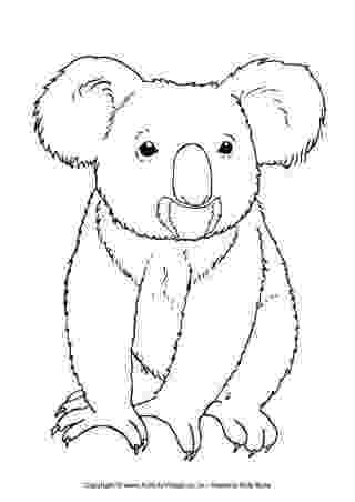 koala coloring pages pin by shalonda on i love koala bears australian coloring koala pages