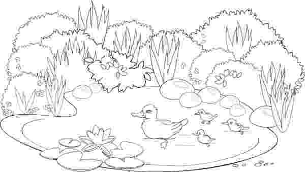 laguna para colorear 儿童画简笔画作品欣赏教你画美丽的小天鹅的简笔画图片 肉丁儿童网 colorear para laguna