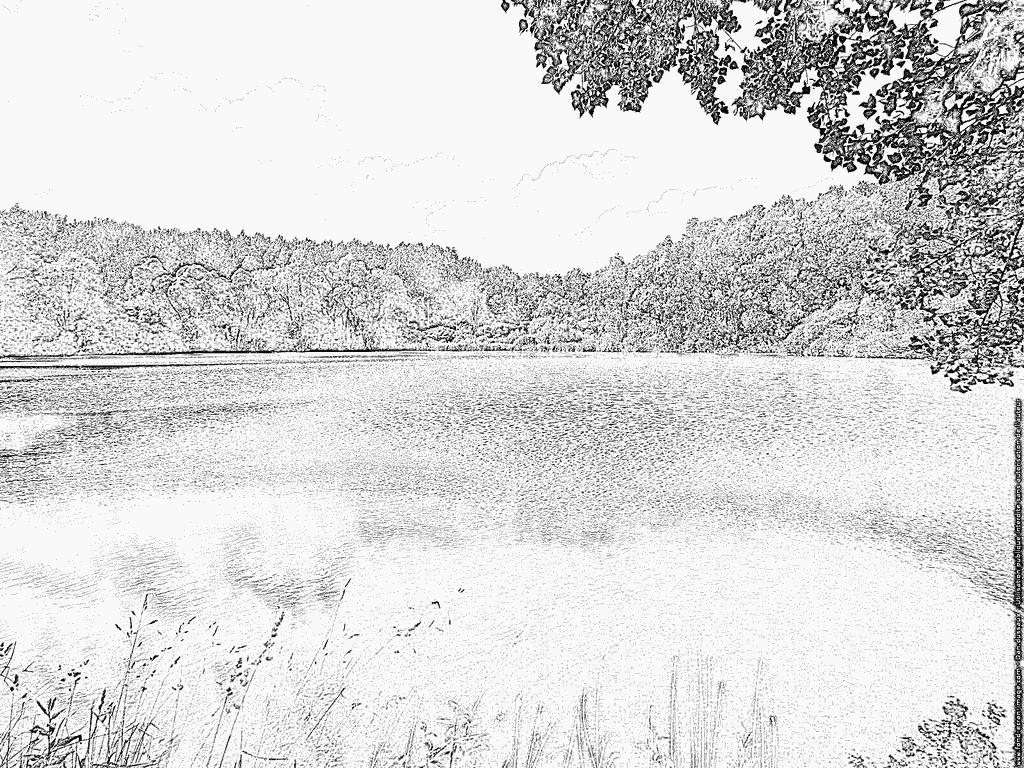 laguna para colorear dibujos para colorear y pintar una hermosa laguna rodeada laguna colorear para
