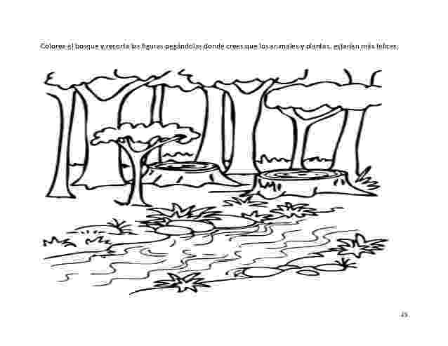 laguna para colorear material didactico educación ambiental para escuela shiroles colorear laguna para