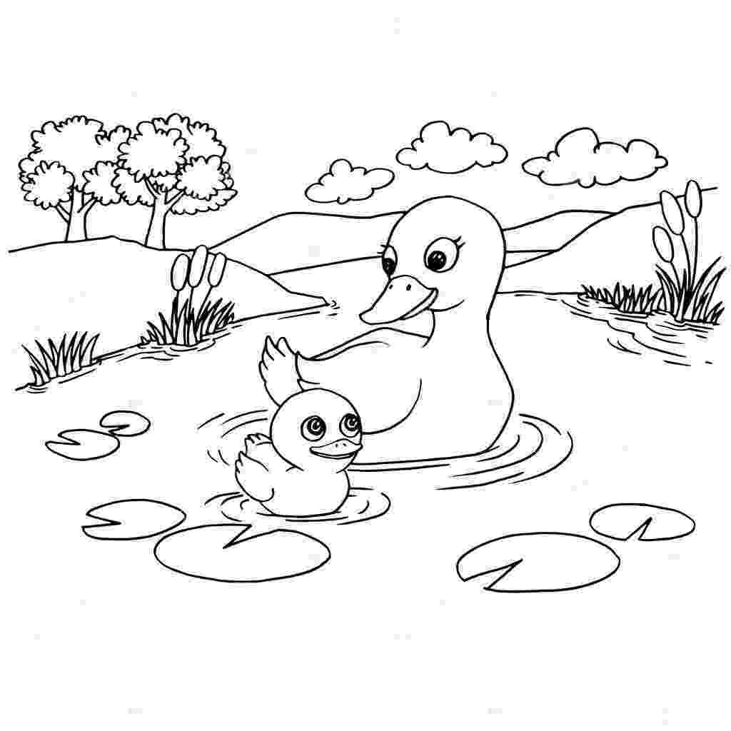 lake coloring page 색칠 페이지 벡터 만화 오리 호수 스톡 벡터 attaphongw 161079380 lake coloring page