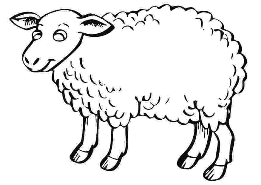 lamb coloring sheet free printable sheep coloring pages for kids lamb sheet coloring