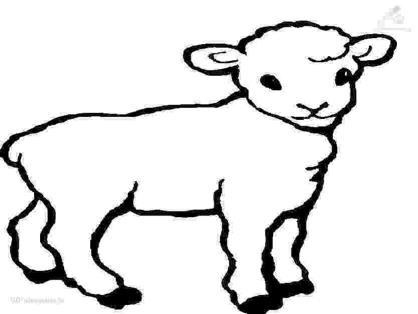 lamb coloring sheet sheep outline coloring page coloring home sheet coloring lamb 1 1