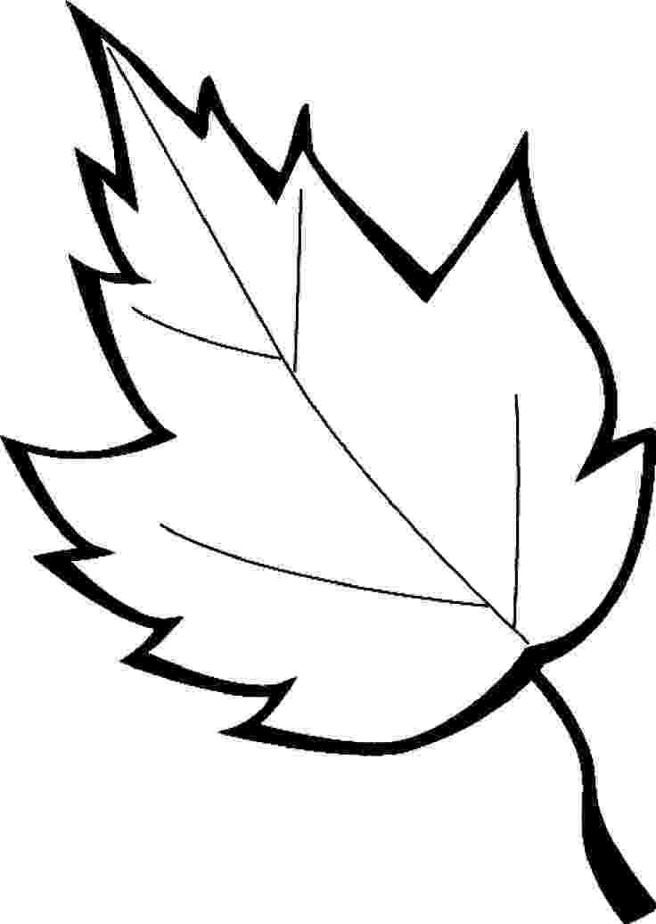 leaves coloring page autumn leaves and acorns coloring page free printable leaves page coloring