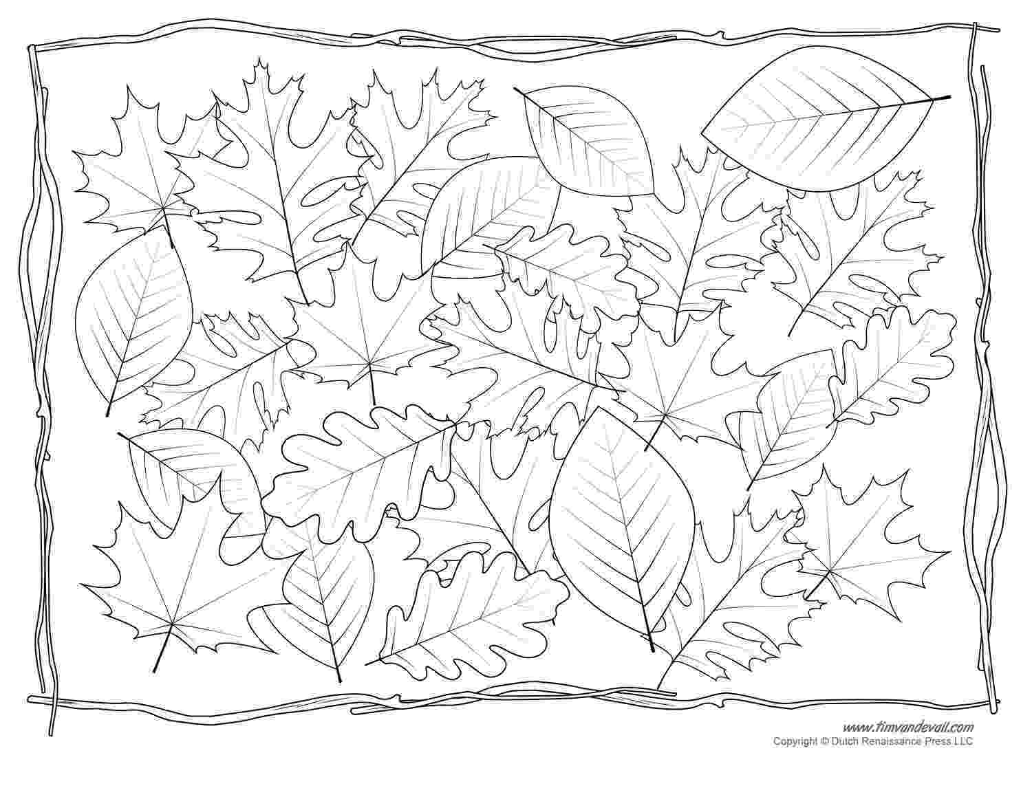 leaves coloring page fall leaves coloring pages 2016 page coloring leaves