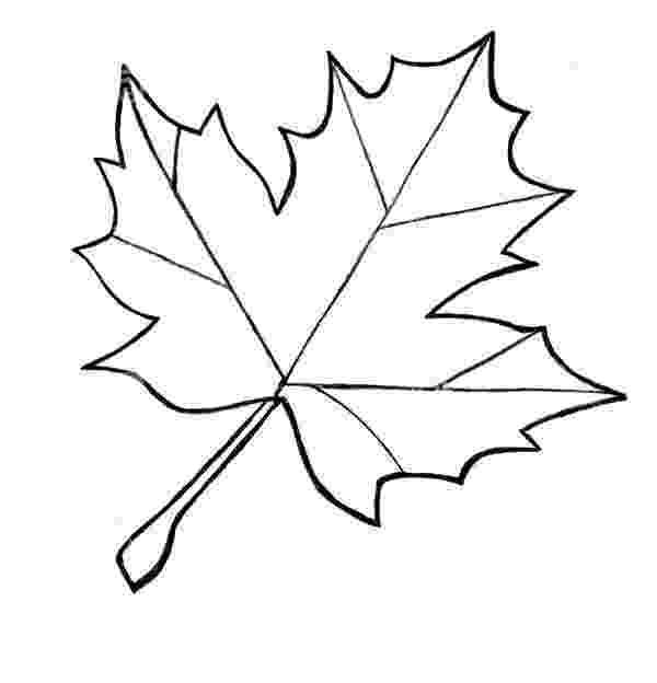 leaves coloring page free printable leaf coloring pages for kids cool2bkids page leaves coloring