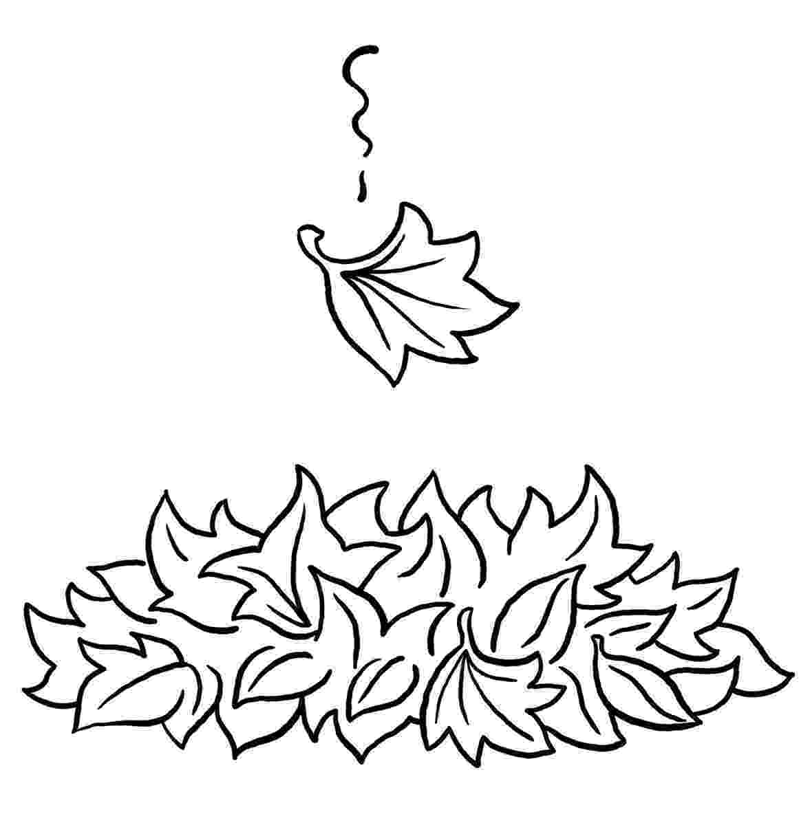 leaves coloring page free printable leaf coloring pages for kids page leaves coloring